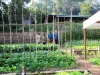 jardin-un